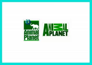 Неудачная смена логотипа Animal Planet