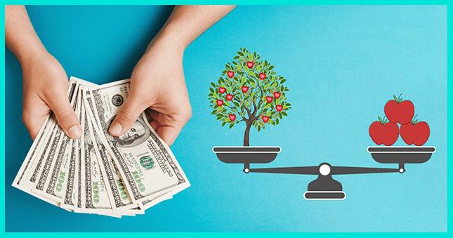 Реинвестирование- это повторное вложение средств
