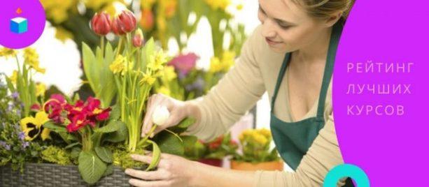 11 лучших курсов флориста, или как заработать на любимом хобби